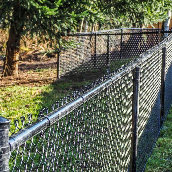 Bakersfield-fence